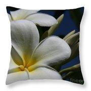 Pua Lena Pua Lei Aloha Tropical Plumeria Maui Hawaii Throw Pillow