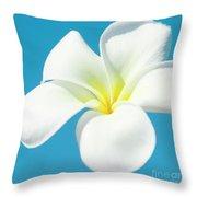 Pua Melia Pakahikahi Throw Pillow