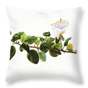 Puapilo Plant Throw Pillow
