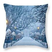 Public Garden Walk Throw Pillow