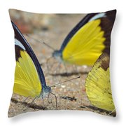 Puddling Throw Pillow