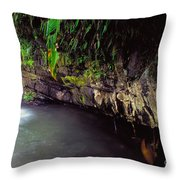 Puerto Rico Waterfall Throw Pillow