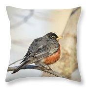Puffed Robin Throw Pillow