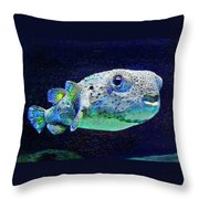 Puffer Fish Throw Pillow by Jane Schnetlage