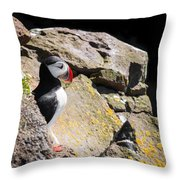 Puffin And Rocks Throw Pillow