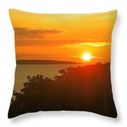 Puffin Island Throw Pillow