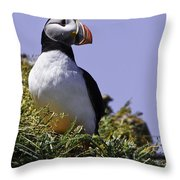 Puffin On The Rock Throw Pillow