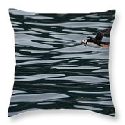 Puffin With Dinner Throw Pillow