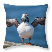 Puffin With Fish For Tea Throw Pillow