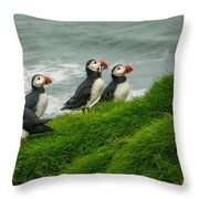 Puffins Returning From Fishing Throw Pillow