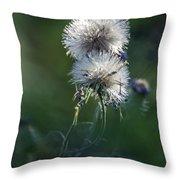 Puffs 1664-111417-1cr Throw Pillow