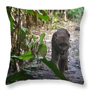 Puma In The Jungle Throw Pillow