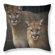 Puma Pair Throw Pillow