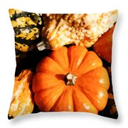 Pumkin And Gourds Throw Pillow