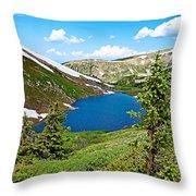 Pumphouse Lake I Throw Pillow