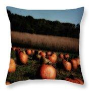 Pumpkin Field Shadows Throw Pillow