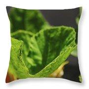 Pumpkin Leaf 2 Throw Pillow
