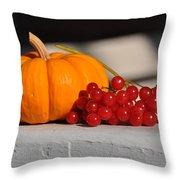Pumpkin N Berries Throw Pillow