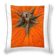 Pumpkin Stem Poster Throw Pillow