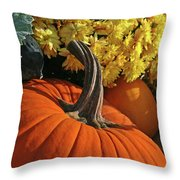 Pumpkin Still Life  Throw Pillow