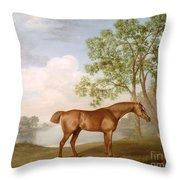 Pumpkin With A Stable-lad Throw Pillow by George Stubbs