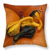 Pumpkins And Gourds Throw Pillow