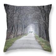 Pumpkinvine Trail December 2015 Throw Pillow