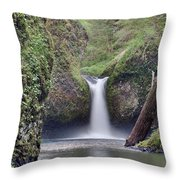 Punch Bowl Falls At Eagle Creek Closeup Throw Pillow