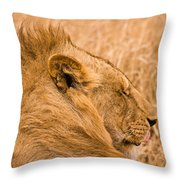Punk Mane Throw Pillow by Adam Romanowicz