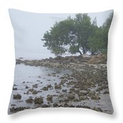 Punta Gorda Throw Pillow