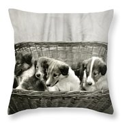 Puppies Of The Past Throw Pillow