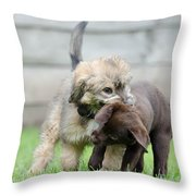 Puppies Playing Throw Pillow