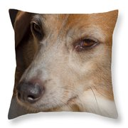 Puppum Throw Pillow