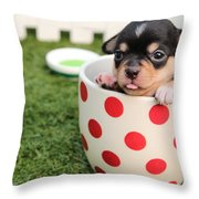 Puppy Cup Throw Pillow