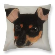 Puppy Foxie  Throw Pillow
