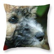 Puppy Love I Throw Pillow