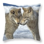 Puppy Love.. Throw Pillow