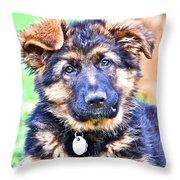 Puppy Oskar 2 Throw Pillow