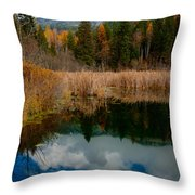 Purcells Reflected Throw Pillow