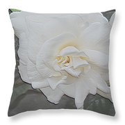 Pure And Pleasant Throw Pillow