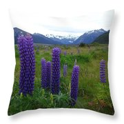Pure And Simple Nature Of New Zealand Throw Pillow
