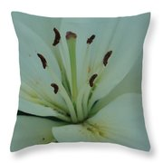 Pure Beautry Throw Pillow