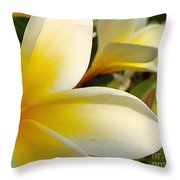 Pure Beauty Plumeria Flowers Throw Pillow