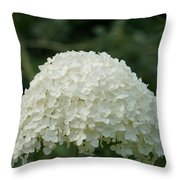 Pure Dome  Throw Pillow