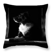 Pure Heart Of A Collie Throw Pillow