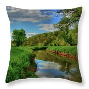 Pure Midwestern Beauty Throw Pillow