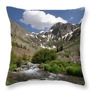 Pure Mountain Beauty Throw Pillow