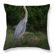Pure Natural Beauty Throw Pillow
