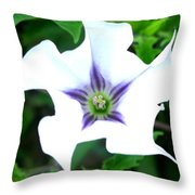 Pure Passion Throw Pillow