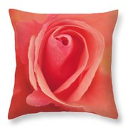 Pure Passion Rose Throw Pillow